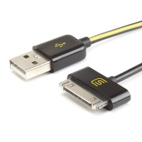 DATASTREAM Premium 30-pin Charger / Charging and Data Sync Cable Cord for MP3 Player , Tablets , Smartphones & More (6 ft.)